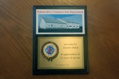 8 x 10 plaque with relief