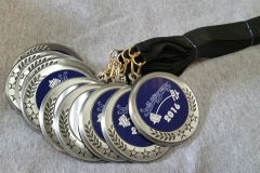 """2"""" insert medallions with lanyard"""