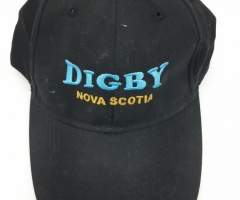 Embroidered Digby hat - Designed by Digby Print & Promo